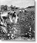 Cotton Industry, Early 20th Century Metal Print by