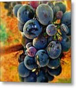 Fall Harvest Metal Print by Kevin Moore