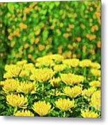 Flower Market Metal Print by MotHaiBaPhoto Prints
