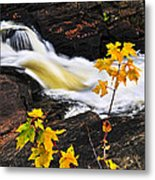 Forest River In The Fall Metal Print by Elena Elisseeva