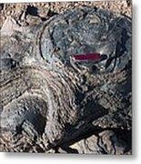 Fossilised Stromatolites Metal Print by Dirk Wiersma