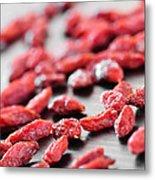 Goji Berries Metal Print by Elena Elisseeva