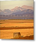 High Plains Of Alberta With Rocky Mountains In Distance Metal Print by Mark Duffy