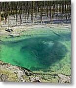 Hot Springs Yellowstone National Park Metal Print by Garry Gay