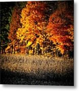 Indiana Autumn Metal Print by Michael L Kimble