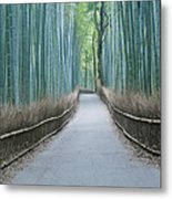 Japan Kyoto Arashiyama Sagano Bamboo Metal Print by Rob Tilley