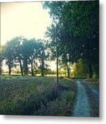 Landscape Near Mauvezin Metal Print by Sandrine Pelissier