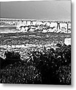 Lonely Are The Brave Metal Print by Ron Regalado