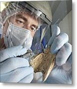 Neanderthal Dna Extraction Metal Print by Volker Steger