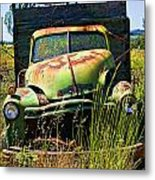 Old Green Truck Metal Print by Garry Gay