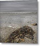 On The Beach Metal Print by Andy Astbury