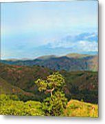 Rinca Panorama Metal Print by MotHaiBaPhoto Prints