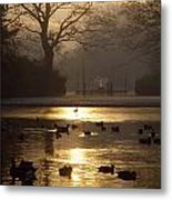 Saint Stephens Green, Dublin, Co Metal Print by The Irish Image Collection