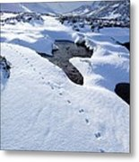 Snowy Landscape, Scotland Metal Print by Duncan Shaw
