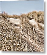 Tranquility Metal Print by Bonnie Bruno