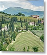 Vineyards On A Hillside Metal Print by Rob Tilley