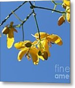 Yellow And Blue Metal Print by Theresa Willingham