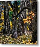 Autumn Landscape Metal Print by Vladimir Kholostykh