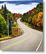 Fall Highway Metal Print by Elena Elisseeva