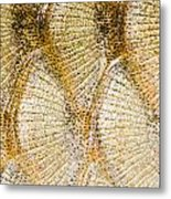Fish Scales Background Metal Print by Odon Czintos