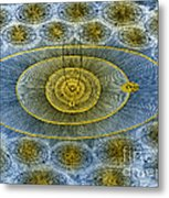 Plurality Of Worlds, Leonhard Euler Metal Print by Science Source