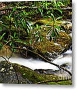 Rhododendron And Waterfall Metal Print by Thomas R Fletcher