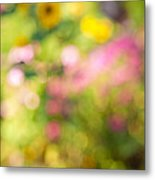 Flower Garden In Sunshine Metal Print by Elena Elisseeva