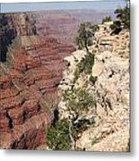 Grand Canyon National Park Arizona Usa Metal Print by Audrey Campion