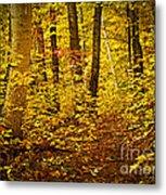 Fall Forest Metal Print by Elena Elisseeva