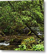 Rushing Mountain Stream Metal Print by Thomas R Fletcher