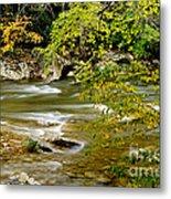 Fall Along Williams River Metal Print by Thomas R Fletcher