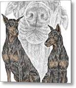 A Doberman Knows - Dobe Pinscher Dog Art Print Metal Print by Kelli Swan