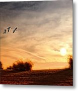 A Little Peace Metal Print by Tom York Images