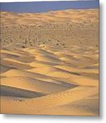 A Sea Of Dunes In The Sahara Desert Metal Print by Stephen Sharnoff