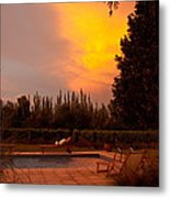 A Small Vineyard And Fine Hotel Metal Print by Michael S. Lewis