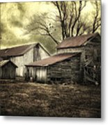 After The Storm Metal Print by Mary Timman