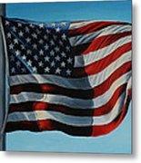 America The Beautiful Metal Print by Daniel W Green
