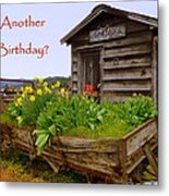 Another Birthday Antiques Metal Print by Cindy Wright