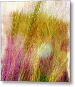 Another Field Of Dreams Metal Print by Judi Bagwell