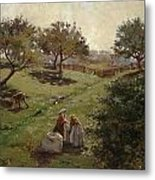 Apple Orchard Metal Print by Luther  Emerson van Gorder