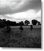 Approaching Storm Over Tree Farm Metal Print by Jan W Faul