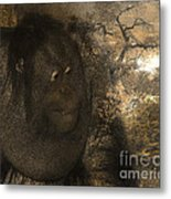 Arboreal Dreams Metal Print by Arne Hansen