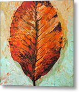 Autumn Colors Metal Print by Chris Steinken