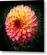 Autumn Colors Metal Print by Nick Kloepping