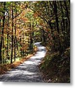 Autumn Country Lane Metal Print by David Dehner