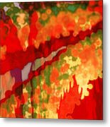 Autumn In The Piedmont Metal Print by Patricia L Conklin