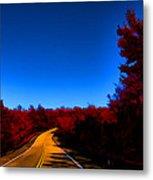 Autumn Red Metal Print by Douglas Barnard