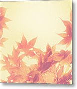 Autumn Sky Metal Print by Amy Tyler