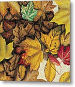 Autumn Splendor Metal Print by JQ Licensing