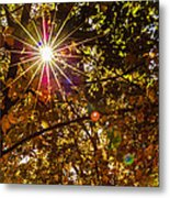 Autumn Sunburst Metal Print by Carolyn Marshall